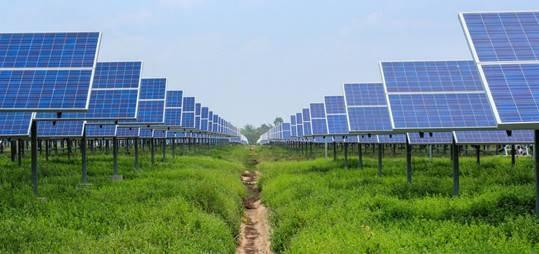 College van Rijksadviseurs: Verbied zonnepanelen op natuur- en landbouwgrond